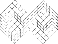 geomterical-illusion