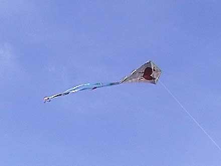 Heart Kite flying high.