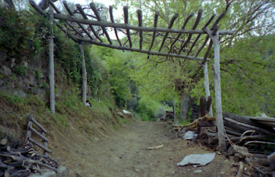 Entrance path to the house I stayed in with the two monks.