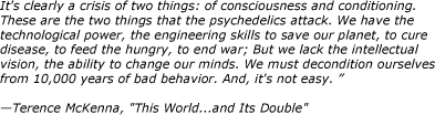 terence-mckenna-quote