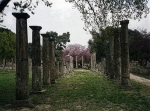 Olympia, Greece - birthplace of the Olympic Games.
