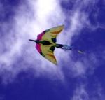 bird-kite-1