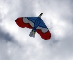 Kite flown near home.