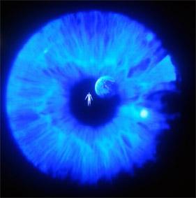 blog castaneda man in eye